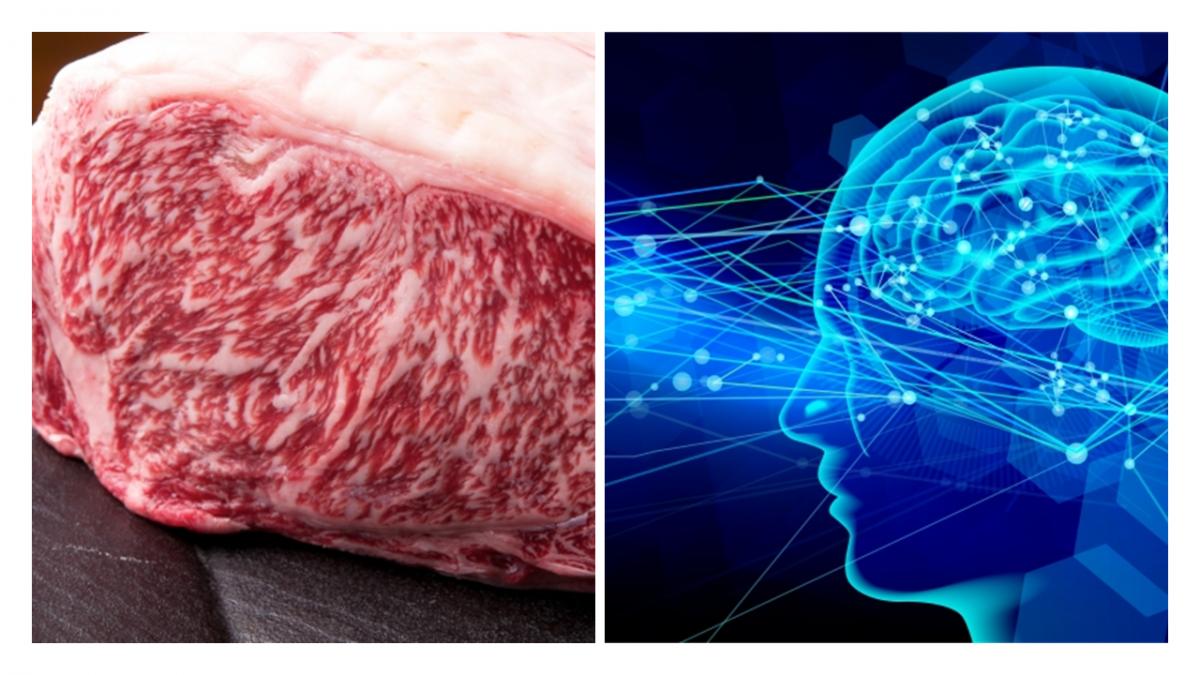 牛肉の格付けを画像認識で